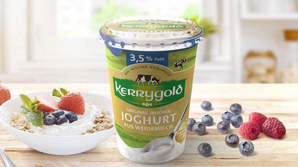 Naturjoghurt von Kerrygold aus irischer Weidemilch (3,5% Fett)