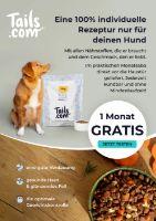 tails.com Prospekt