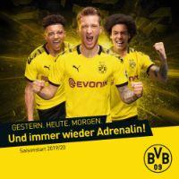 Borussia Dortmund Prospekt