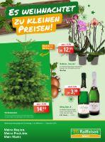 ZG Raiffeisen Markt Prospekt