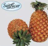 Ananas Extra Sweet von SanLucar