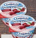 Quark von Exquisa