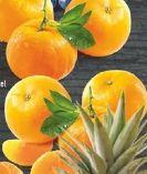 Mandarinen von Edeka
