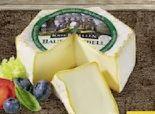 Bauernrebell von Käse Rebellen