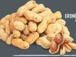 Erdnüsse Jumbo von Edeka