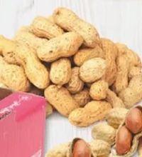 Erdnüsse von Jumbo
