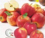 Land-Tafeläpfel von Edeka Mein Land