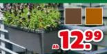 Bewässerungs-Blumenkasten Flora Premium
