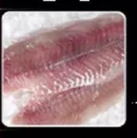 Seelachsfilet von Fisch Kalter