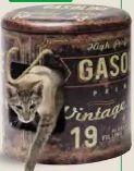 Katzenbox Gasoline