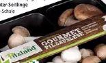 Gourmet Pilzauslese von Pilzland