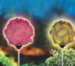Solar Stableuchte Leuchtball