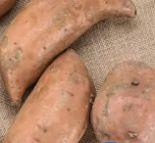 Süßkartoffeln Murasaki