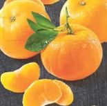 Mandarinen von Edeka Selection