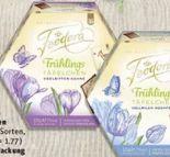 Schokoladen-Täfelchen von Feodora