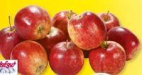 Tafeläpfel Red Prince von Hofgut
