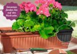 Blumenkasten von Garden Feelings