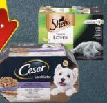 Hundefutter Vital Multipack von Cesar