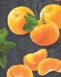 Mandarinen Nadorcott von Edeka Selection