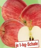 echt & gut Tafeläpfel Gala von Unsere Heimat