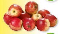 Tafeläpfel Jonagored von Hofgut