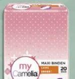 Maxi-Binden von Camelia