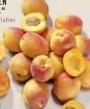 Aprikosen Flopria