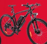 E-Bike Sporty 645 von Wayscral