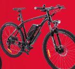 E-Bike Sporty 645 von Wayscral