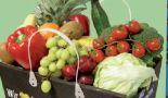 Obst-Gemüse-Transportkiste