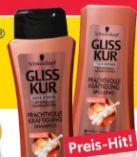 Gliss Kur Shampoo von Schwarzkopf
