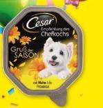 Gruß der Saison von Cesar