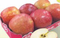Tafeläpfel Cripps Pink von Pink Lady