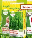Rasensamen von Augsburg