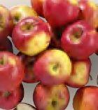 Tafeläpfel von Real Bio