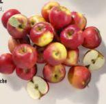 Tafeläpfel von Real Quality