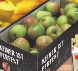 Tafeläpfel Holsteiner Cox