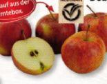 Tafeläpfel Jonagored