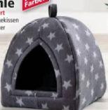 Katzenhöhle von Cat Bonbon