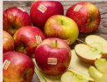 Bio-Apfelvielfalt