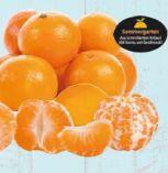 Mandarinen von Sommergarten