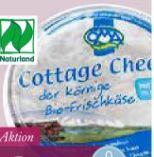 Bio-Cottage Cheese von ÖMA