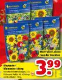 Blumenmischung von Kiepenkerl