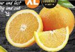 Orangen von Gourmet Hit