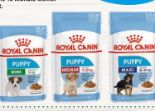 Size Health Nutrition von Royal Canin