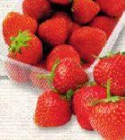 Bio Erdbeeren von NaturWert