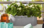 Pflanzgefäß von Gardenline