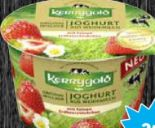 Weidemilch Joghurt von Kerrygold