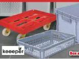 Robusto Systembox-Korb von Keeeper