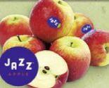 Tafeläpfel Scifresh von Jazz Apple